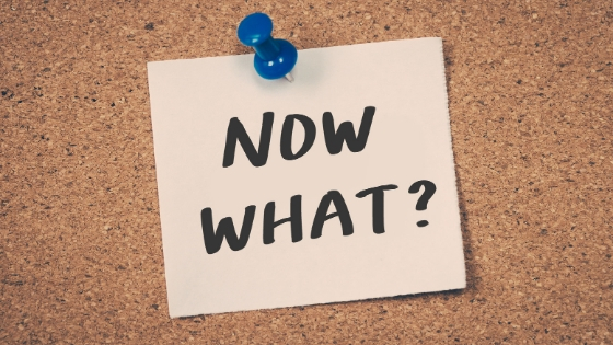 So, you've set up a new business…now what!?